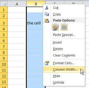 how to change the size of a cell in Microsoft Excel 2010