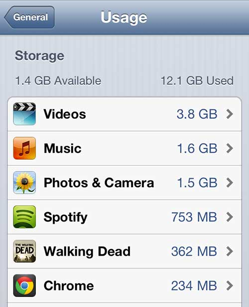 iphone 5 usage screen