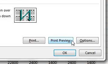 click the print preview button