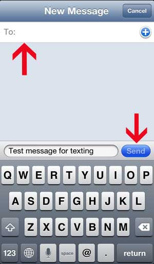 send the text message